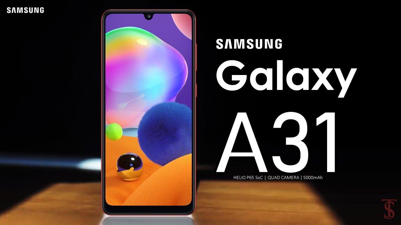 Samsung Galaxy A31 - دليلك - مصر