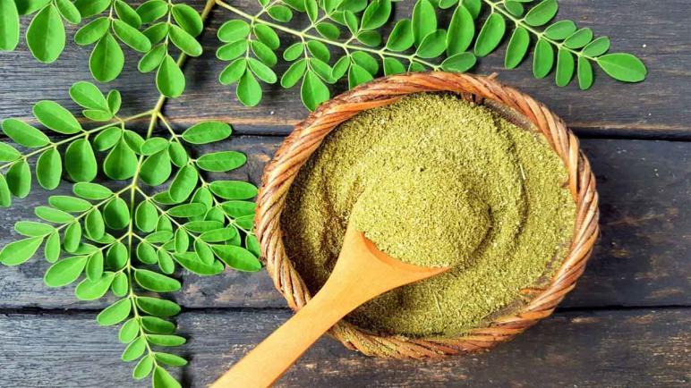 فوائد عشبة وشاي وزيت المورينجا وأفضل منتجاتها