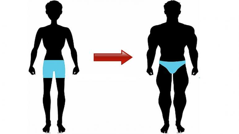 فوائد وأضرار النورافيت لزيادة الوزن